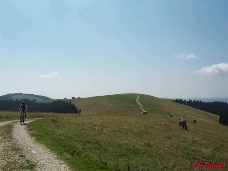 Monte Longara