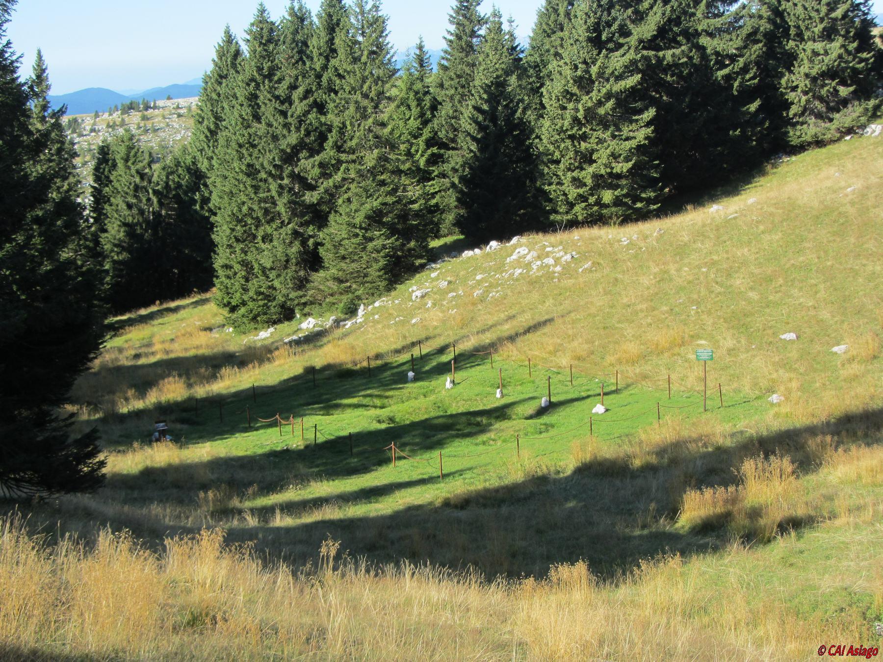 Ex cimitero bosniaco