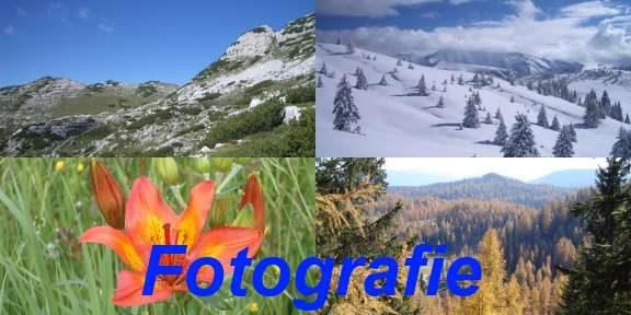 Gallerie fotografiche